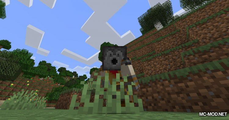 Everything is a Hat mod for Minecraft (8)