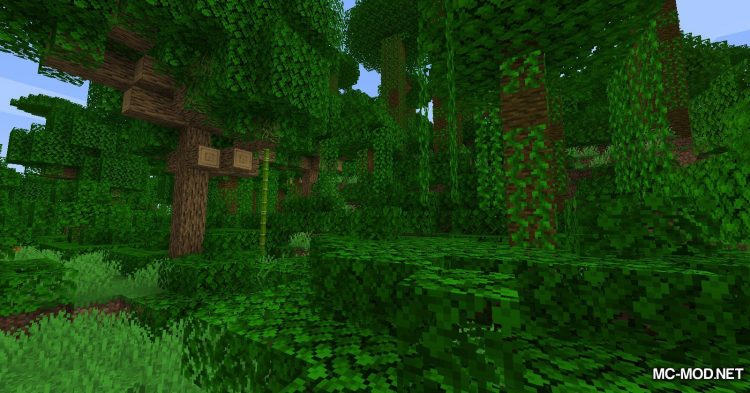 Ladder API mod for Minecraft (5)