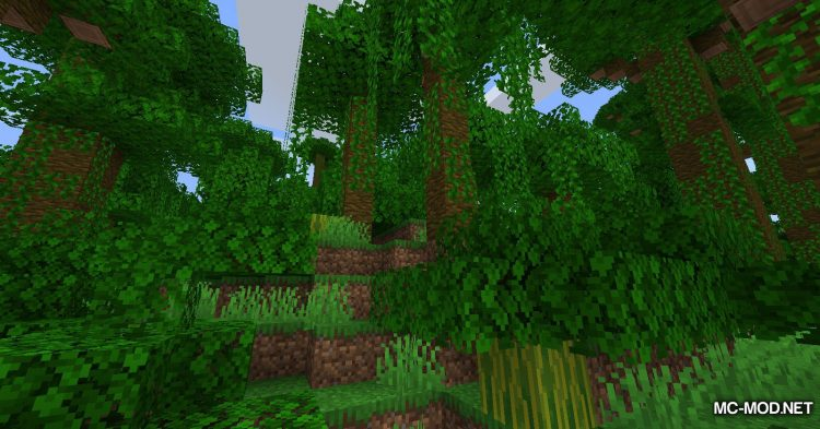 Ladder API mod for Minecraft (8)