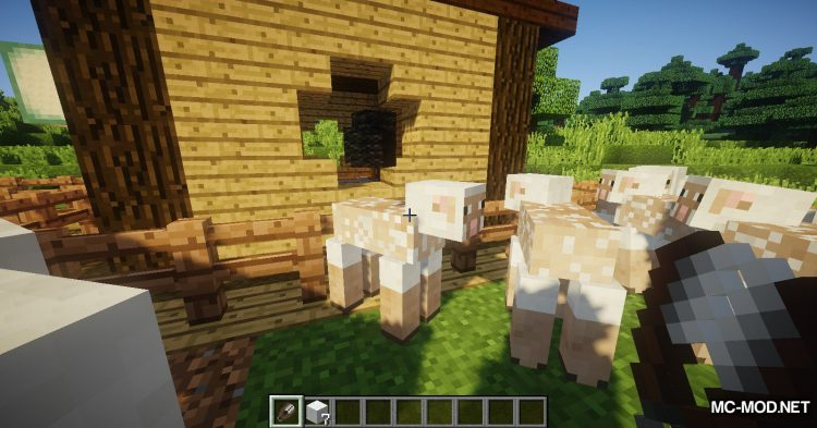 WoolToString mod for Minecraft (4)
