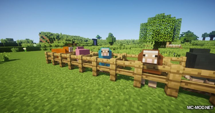 WoolToString mod for Minecraft (5)