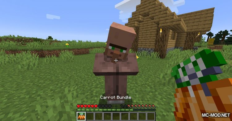 Carrots mod for Minecraft (11)