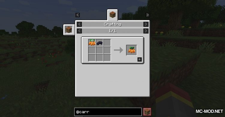 Carrots mod for Minecraft (16)