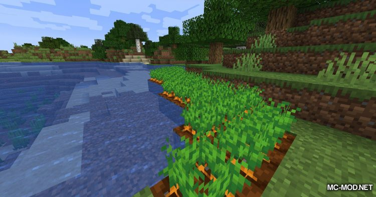 Carrots mod for Minecraft (4)