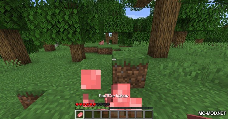 Hunger Remover mod for Minecraft (5)
