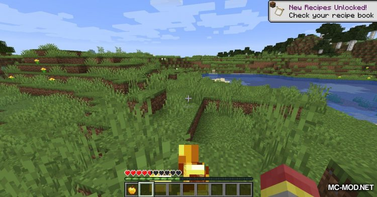 Hunger Remover mod for Minecraft (6)