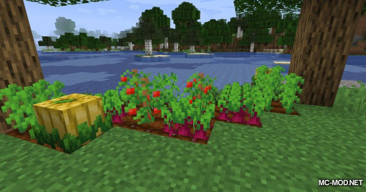 Simple Farming mod for Minecraft (6)