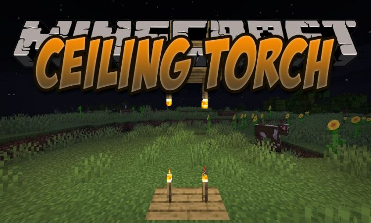Ceiling Torch mod for Minecraft logo