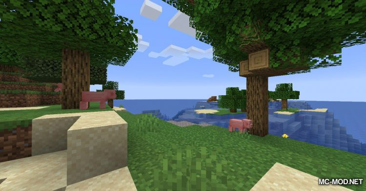 EasyCoords mod for Minecraft (11)