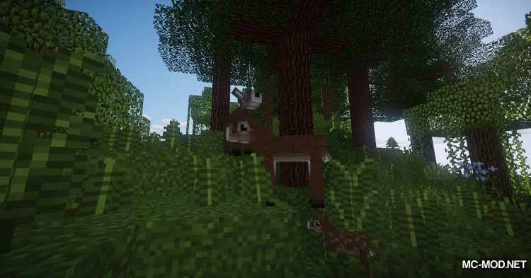 Familiar Fauna mod for Minecraft (6)