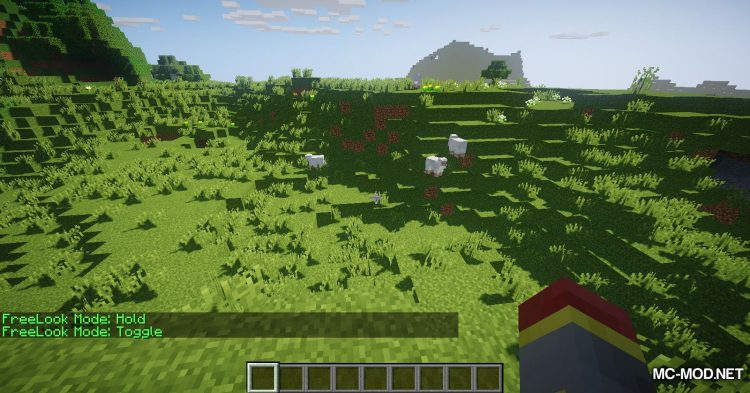 FreeLook mod for Minecraft (10)