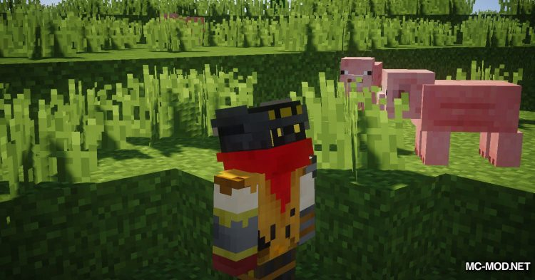 FreeLook mod for Minecraft (13)