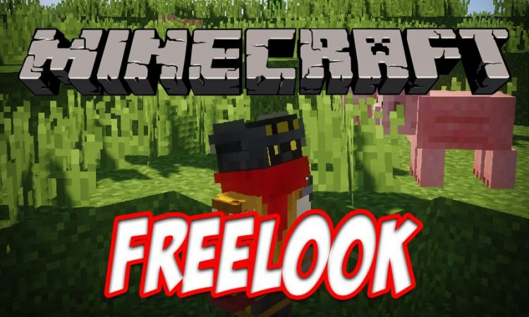 FreeLook mod for Minecraft logo