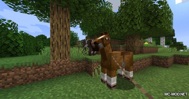 Mounted Pearl mod for Minecraft (11)