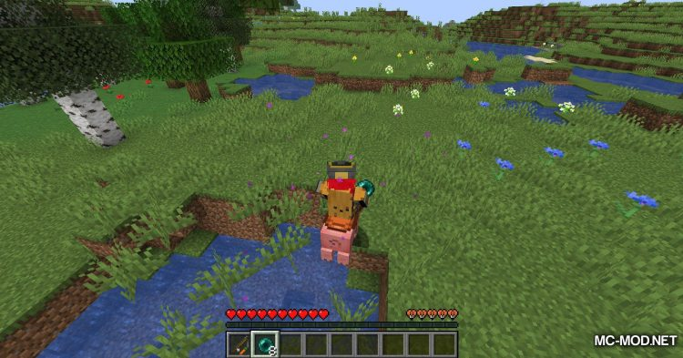 Mounted Pearl mod for Minecraft (8)