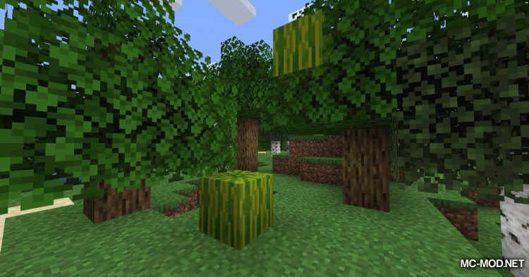 Resource Melons mod for Minecraft (2)