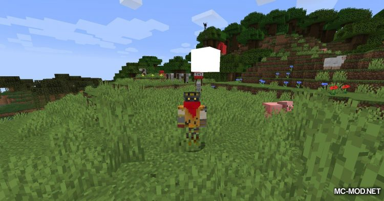 TNT Yeeter mod for Minecraft (13)