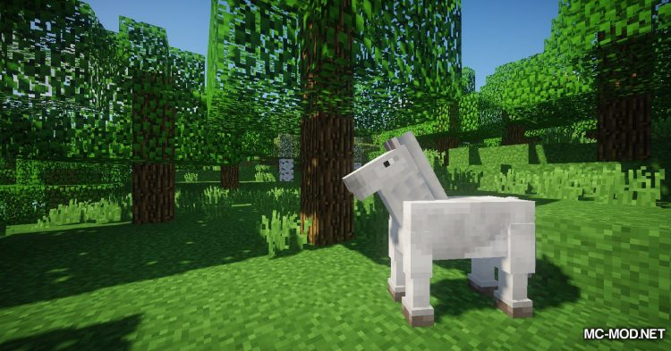 The Narrow Gate mod for Minecraft (3)