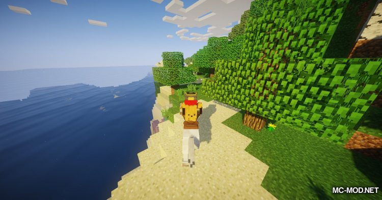 The Narrow Gate mod for Minecraft (5)