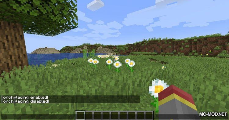 Torchplacer mod for Minecraft (2)
