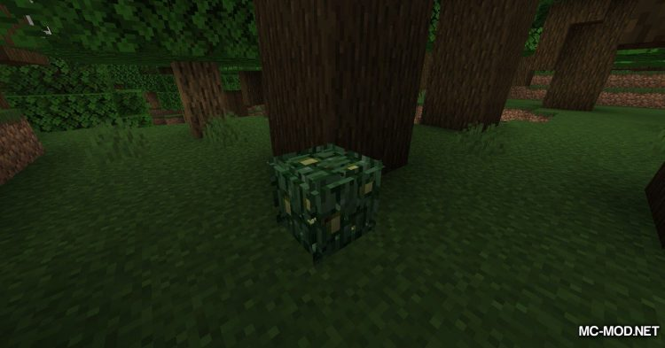Berry Bushes mod for Minecraft (3)