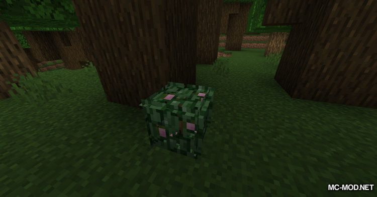 Berry Bushes mod for Minecraft (4)