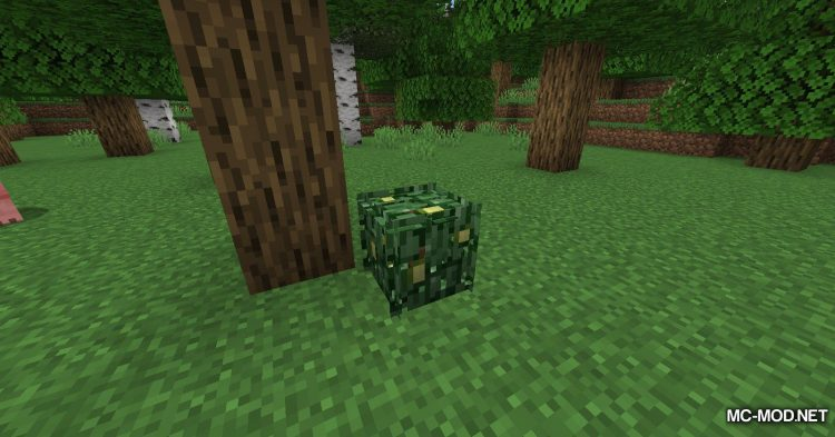 Berry Bushes mod for Minecraft (5)