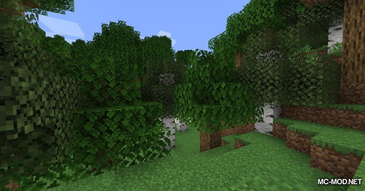 Caelus API mod for Minecraft (3)