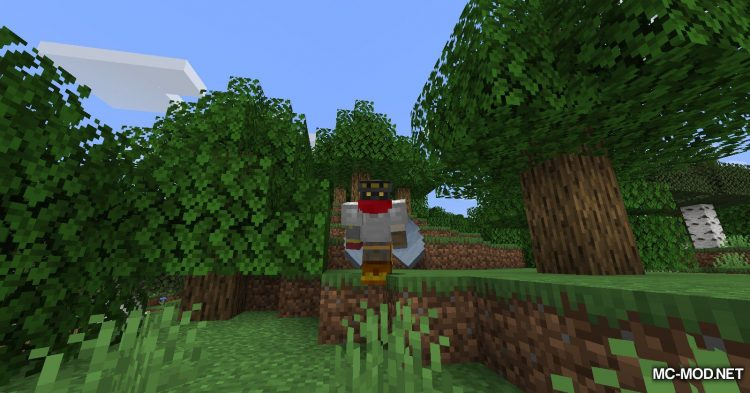 Caelus API mod for Minecraft (5)