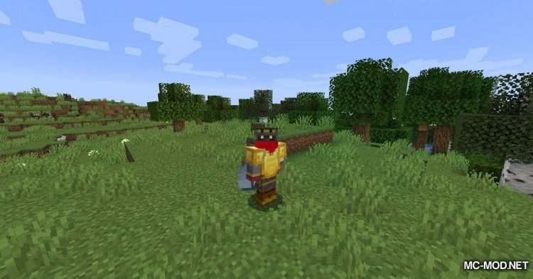 Curios API mod for Minecraft (11)