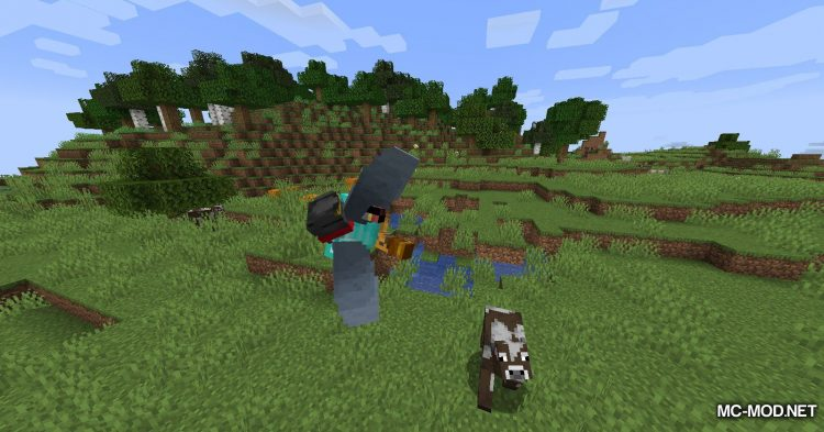 Curious Elytra mod for Minecraft (9)