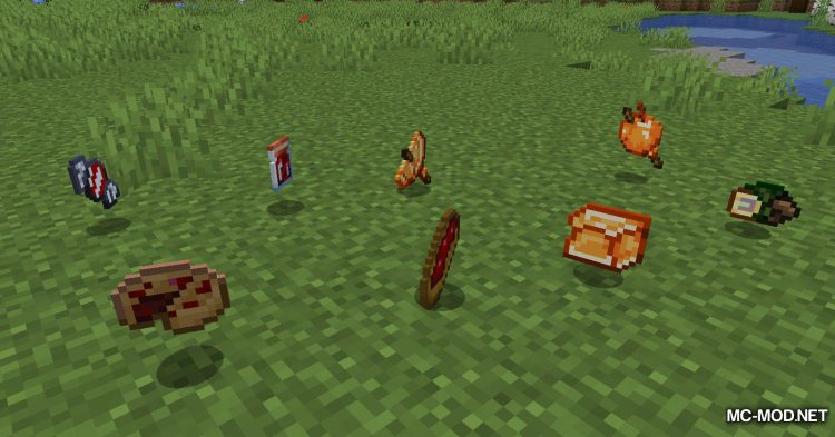 Extra Enrichments mod for Minecraft (14)