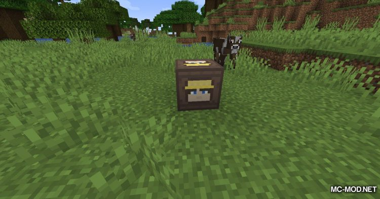 Lot_s of Steves mod for Minecraft (4)
