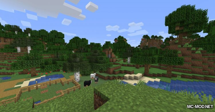 Personal Effects mod for Minecraft (2)