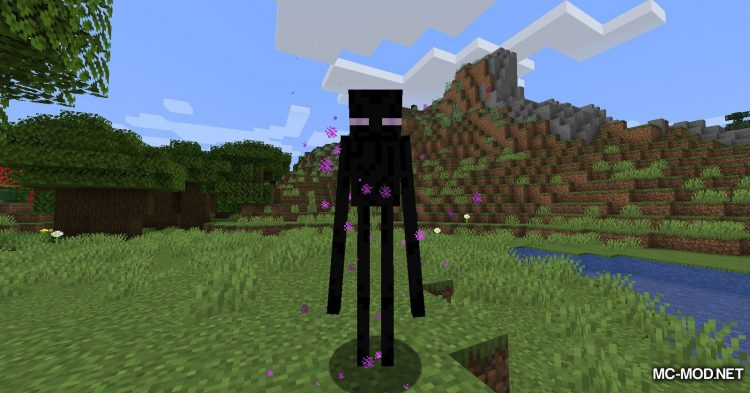 Ring of Teleport mod for Minecraft (3)