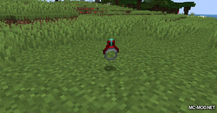 Ring of Teleport mod for Minecraft (5)