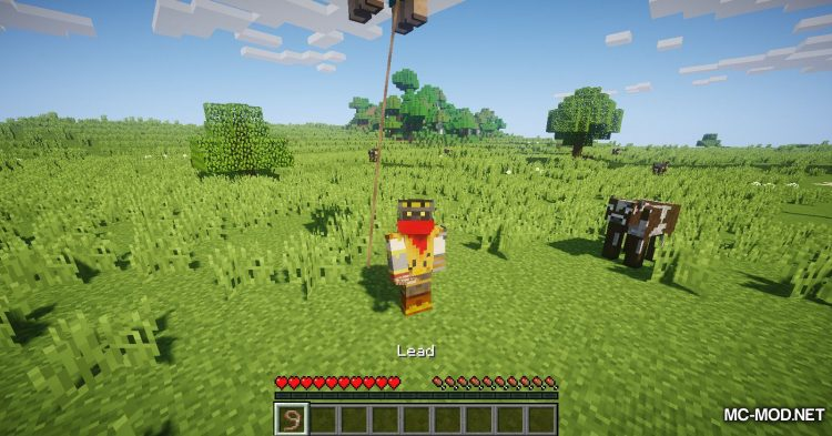 Balloon Sheep mod for Minecraft (11)
