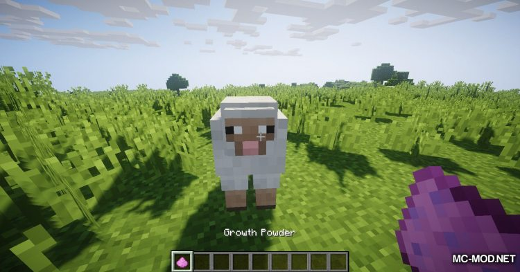 Balloon Sheep mod for Minecraft (4)