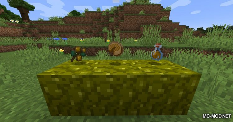 Berry_s Mod mod for Minecraft (10)