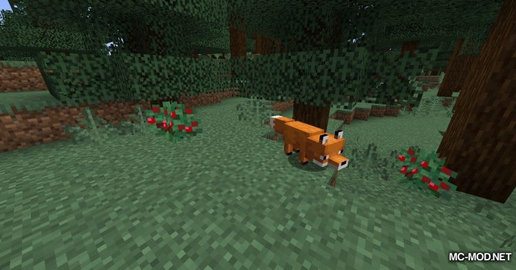 Berry_s Mod mod for Minecraft (2)