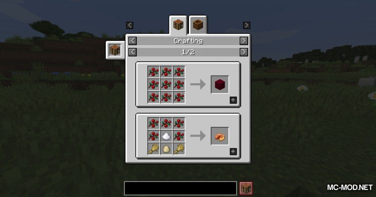 Berry_s Mod mod for Minecraft (3)