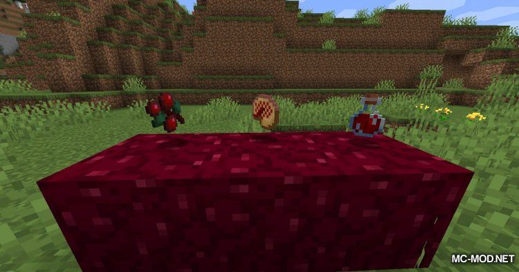 Berry_s Mod mod for Minecraft (5)