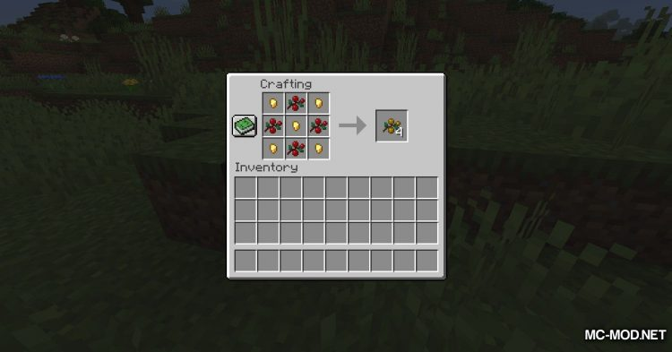 Berry_s Mod mod for Minecraft (6)