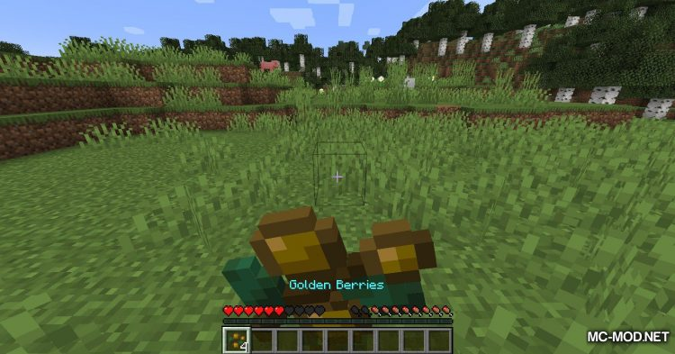 Berry_s Mod mod for Minecraft (7)