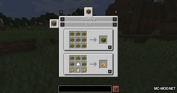 Berry_s Mod mod for Minecraft (8)
