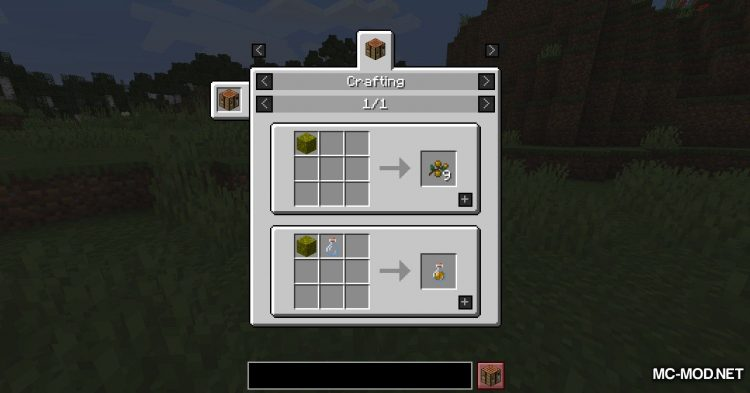 Berry_s Mod mod for Minecraft (9)