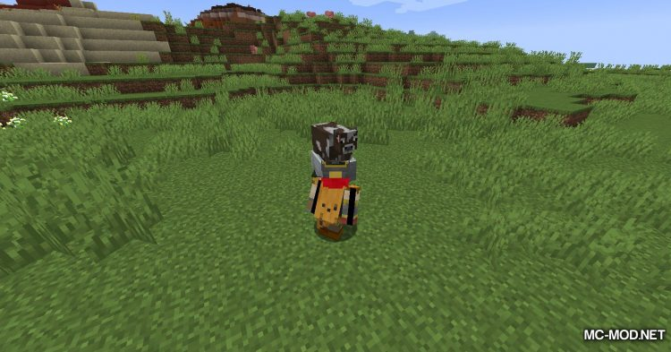 Dismount Entity mod for Minecraft (5)