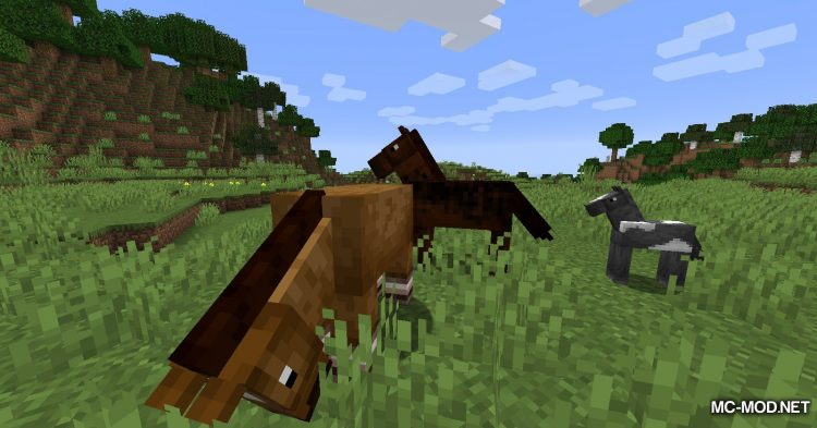 Horse Modifiers mod for Minecraft (2)