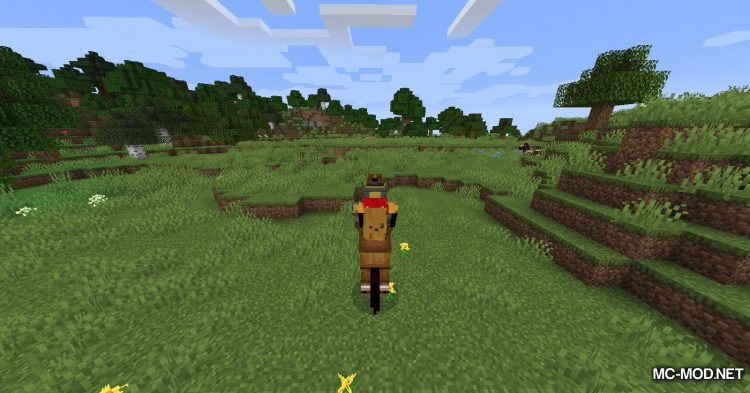 Horse Modifiers mod for Minecraft (5)