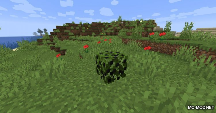 More Berries mod for Minecraft (1)